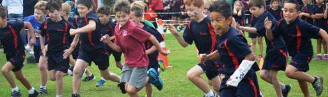 Junior Athletics Friday 18 November